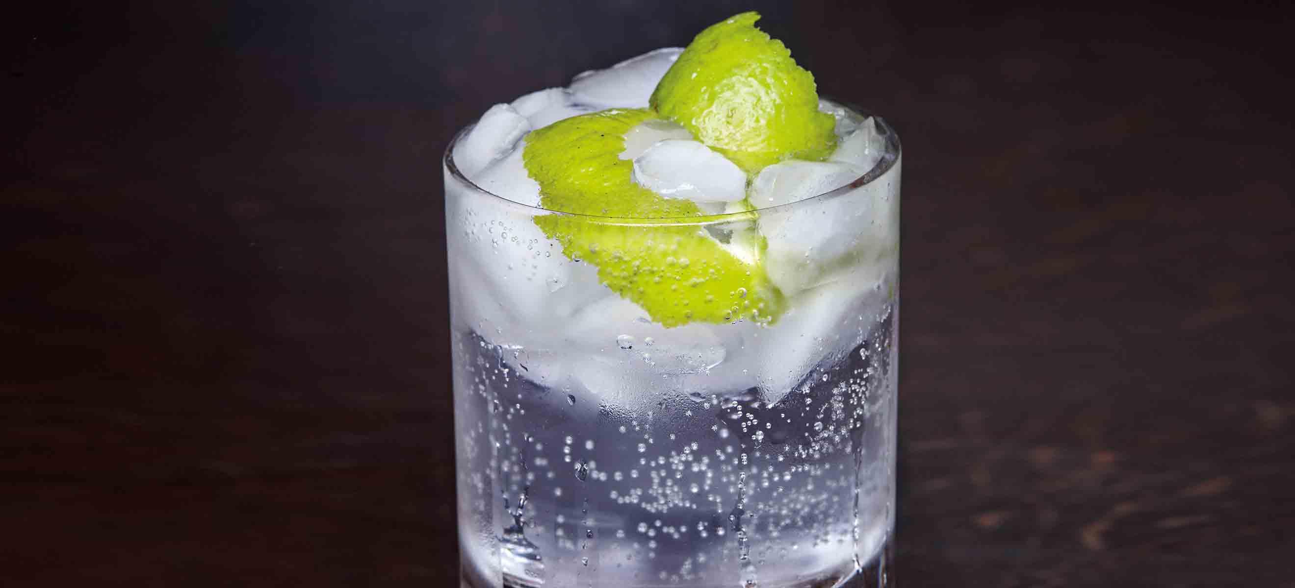 Produkttest Tonic: Das beste Tonic zum Gin - Falstaff