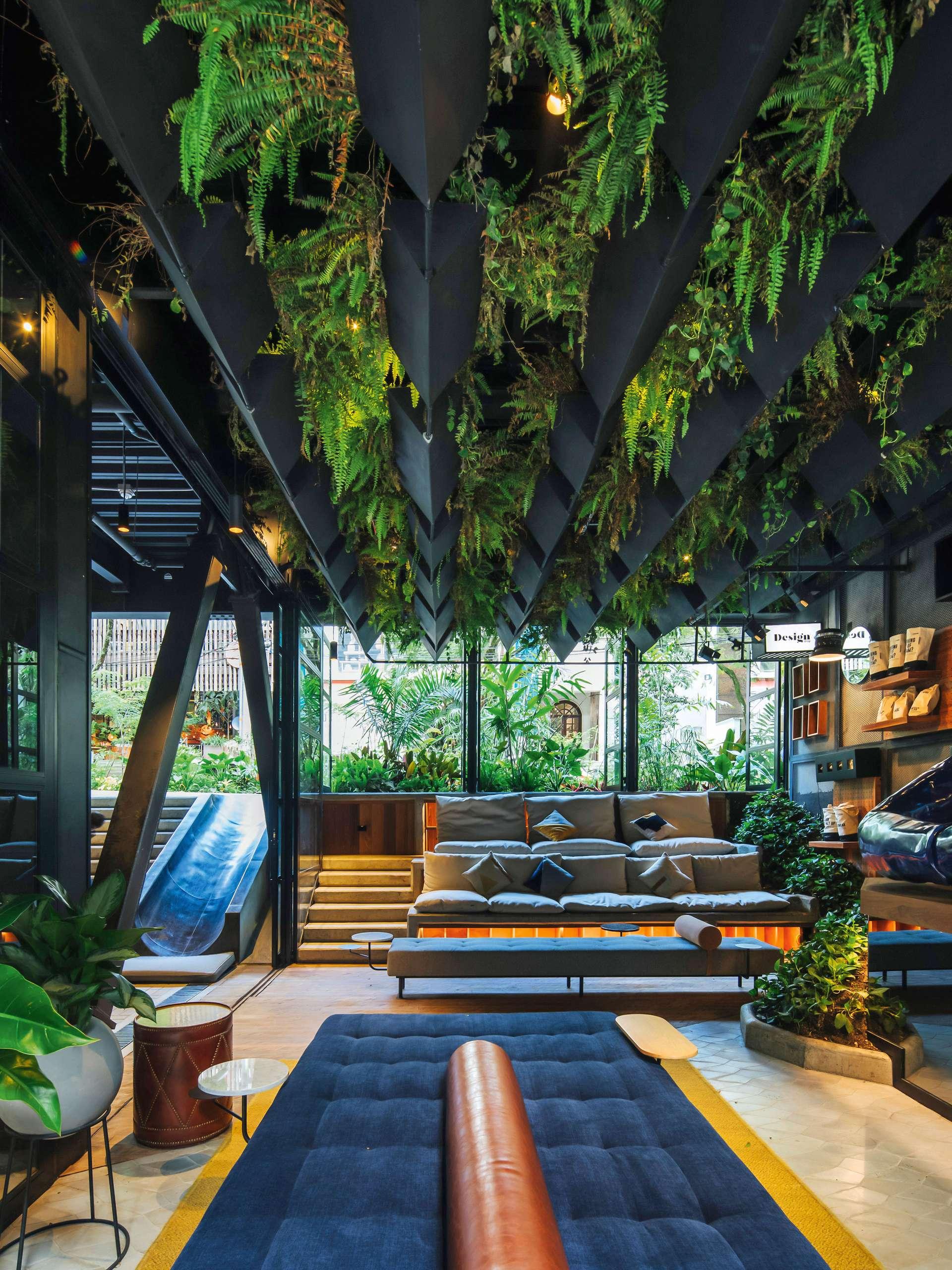 Urban Jungle Lass dich Pflanzen   Falstaff LIVING
